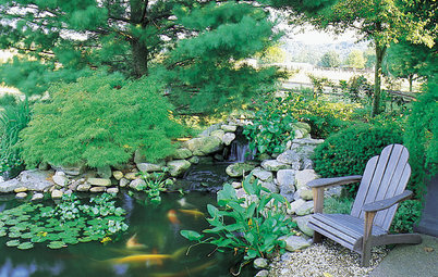 Koi Find Friendly Shores in Any Garden Style