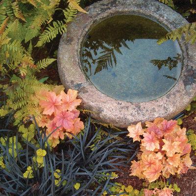 Fabelhaft Wie lässt sich ein Schattengarten schön gestalten? &FS_56