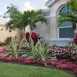 This is an example of a small tropical partial sun front yard landscaping in Miami.