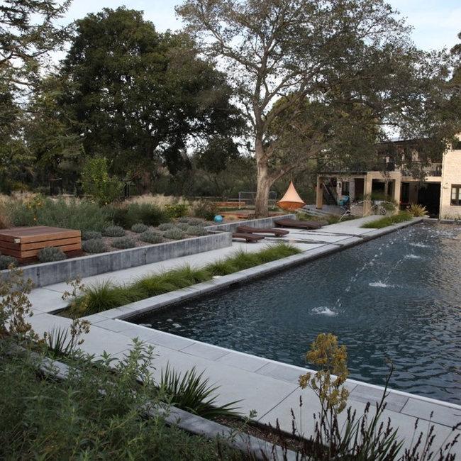 Contemporary Landscape Architecture the garden route company - san francisco, ca - landscape
