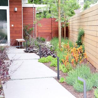 Cette photo montre un xéropaysage avant rétro de taille moyenne avec une entrée ou une allée de jardin, une exposition ensoleillée et des pavés en béton.