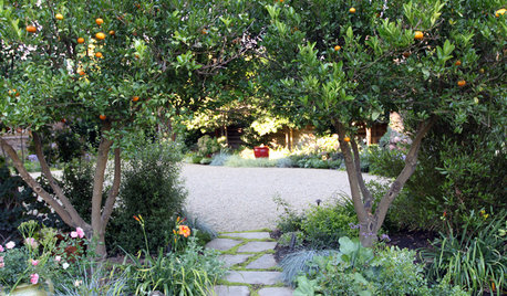 How to Become a Better Gardener