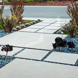 This is an example of a mid-sized modern front yard concrete paver landscaping in San Francisco.