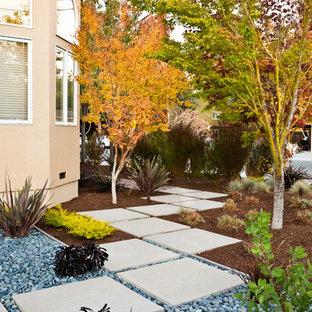 Cette image montre un jardin avant minimaliste de taille moyenne avec une entrée ou une allée de jardin et des pavés en béton.