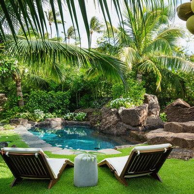 This is an example of a large tropical partial sun backyard stone landscaping in Hawaii for summer.