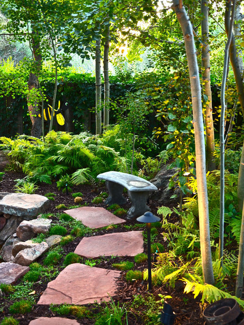 hill backyard design ideas remodel pictures houzz