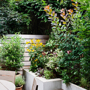 Design ideas for a mid-century modern backyard landscaping in New York.