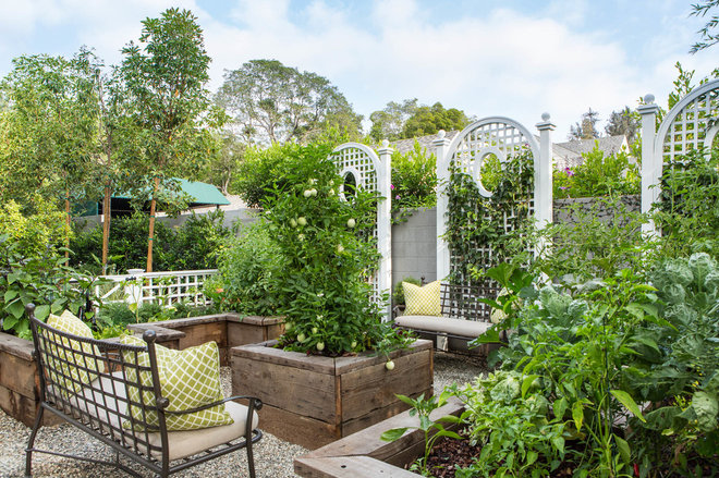 Traditional Garden by Louise O'Malley Interior Design