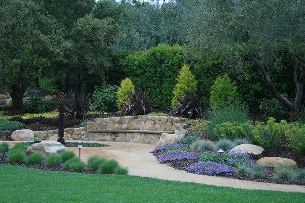 Mediterranean Landscape by Pat Brodie Landscape Design