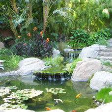 Tropical Landscape by Pat Brodie Landscape Design