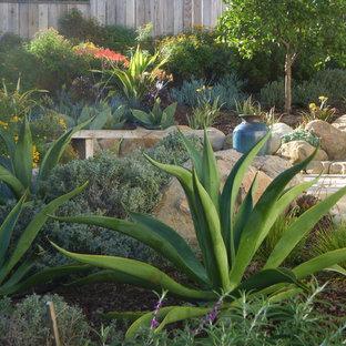 Photo of a mediterranean hillside landscaping in Santa Barbara.