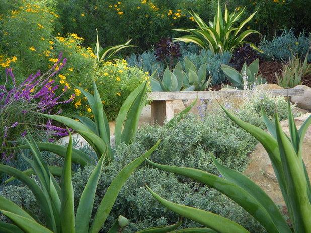 Mediterran Garten by Pat Brodie Landscape Design
