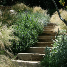 Traditional Landscape by Larson Landscaping