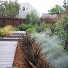 ¿Es posible tener un jardín de diseño de 250 m² por 10.000 €?