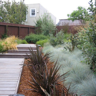 Inspiration for a contemporary backyard landscaping in San Francisco with decking.