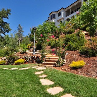 Inspiration For A Contemporary Full Sun Hillside Landscaping In Sacramento