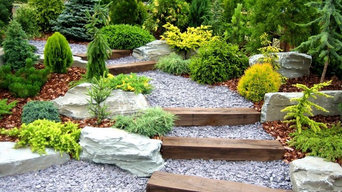 Patio and Landscape Renovations
