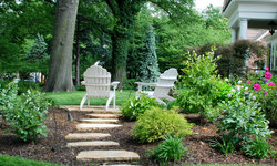 Patio & Stepping Stones