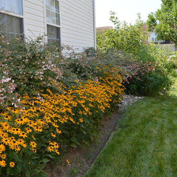 Patio, Curb Appeal and Planting Project - Upper Marlboro