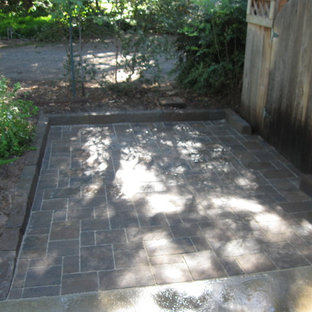 Inspiration for a small shade concrete paver garden path in Other.