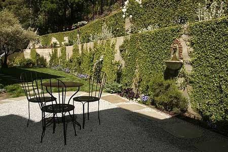 vine covered wall houzz. Black Bedroom Furniture Sets. Home Design Ideas