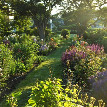 Perennial garden in late afternoon