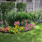 For Perennial Lovers Traditional Landscape Denver