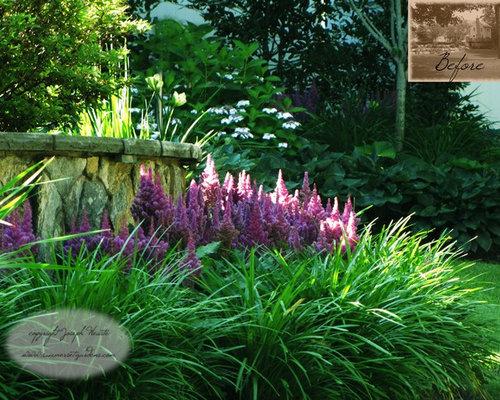 Liriope Muscari Landscaping | Houzz