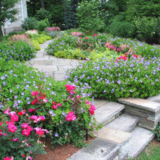 Traditional Landscape by Dorer & Associates Inc.