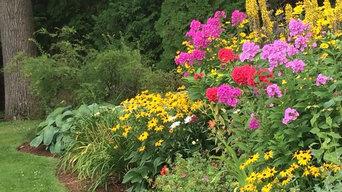 Perennials Over Lake Champlain