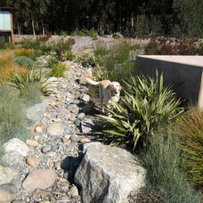 Contemporary Landscape by Cathleen Hudson Landscapes