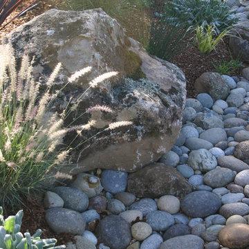 Petaluma Landscape-Dry River Bed