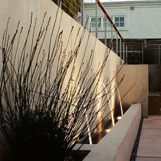 Modern Landscape by Lazar Landscape Design and Construction