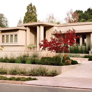 Piedmont Modern Garden