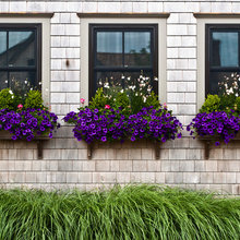 how to get your window boxes right