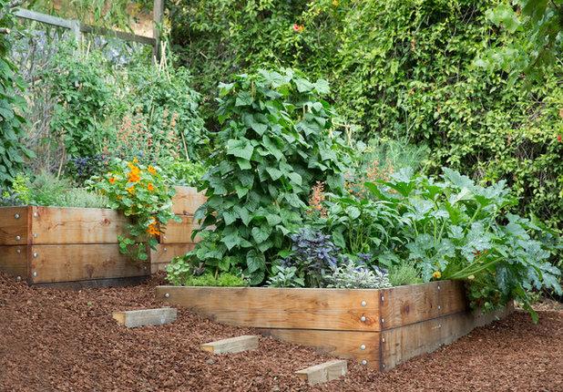 Сад by Pine House Edible Gardens
