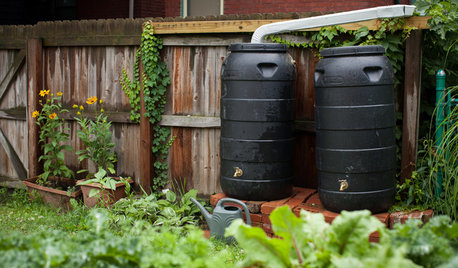 Eco-Home: A Guide to Rainwater Harvesting