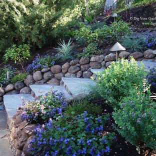 Imagen de jardín de secano, mediterráneo, en otoño, en ladera, con exposición total al sol y adoquines de piedra natural