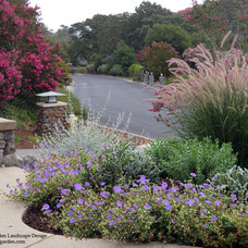 Traditional Landscape by Dig Your Garden Landscape Design