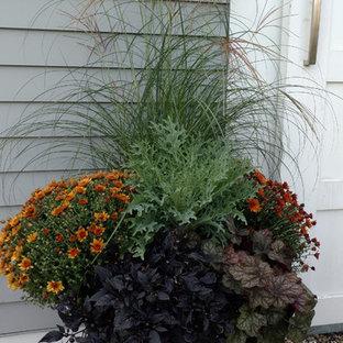 На фото: осенние участки и сады в классическом стиле с растениями в контейнерах и полуденной тенью