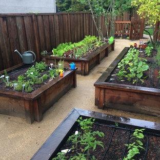 Modelo de jardín campestre, grande, en verano, en patio lateral, con jardín de macetas, exposición total al sol y gravilla