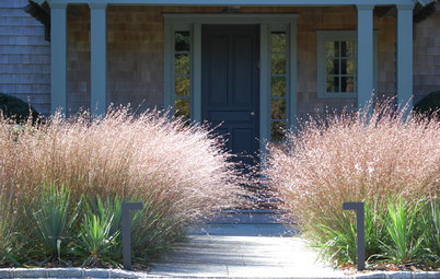 How to Create Beauty in Your Garden With Ornamental Grasses
