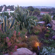 Mediterranean Landscape by Garden Of Eva Landscape Design Group