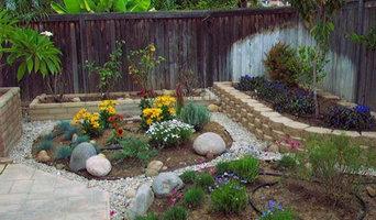 Plants, Water, & Stone