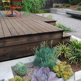 Inspiration for a small modern partial sun backyard gravel formal garden in San Francisco for summer.
