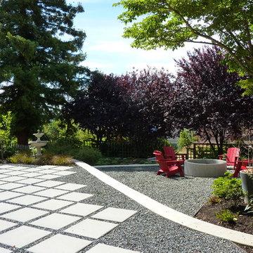 Plum Tree Backyard