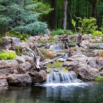 Pond Overhaul - Bedminster, NJ