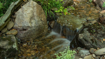 Pondless Waterfalls and backyard stream.