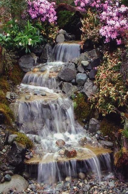 Traditional Landscape by Premier Ponds