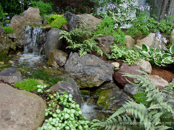 Traditional Landscape by Acorn Ponds & Waterfalls